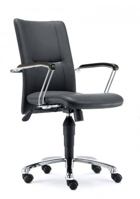 Classic Designed Leather Chair